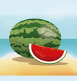 watermelon fruit fresh harvest - beach background vector image
