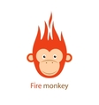 Funny Redhead fiery monkey on vector image