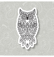 Ethnic pattern with the image of an owl vector image vector image