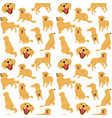 golden retriever seamless pattern vector image vector image