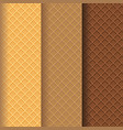 wafer texture pattern background vector image vector image