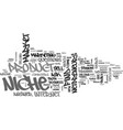what s your niche market text word cloud concept vector image vector image