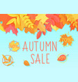 autumn sale flyer template banner vector image