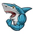 cartoon strong shark mascot design vector image vector image