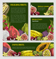 exotic tropical fruit banner poster template set vector image vector image