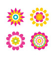 flowers in bloom collection vector image vector image