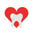 heart with human tooth isolated icon vector image vector image