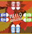 hello autumn color persons feet vector image vector image