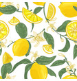 seamless pattern with lemons whole and cut into vector image