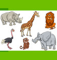 cartoon safari animal characters set vector image vector image