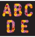 Letters of flowers vector image vector image