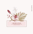 pampas grass pink orchid paper cut floral vector image vector image