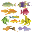10 colorful decorative fishes vector image