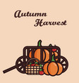 a cart filled with crop pumpkins vector image