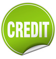 credit round green sticker isolated on white vector image vector image