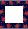 cypress vine flower on christmas blue banner card vector image
