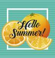 hello summer orange fresh fruit poster vector image vector image