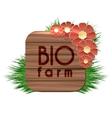 Organic bio farm wood banner vector image