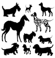 Set of of dogs silhouettes - scottish terrier vector image