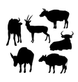 Cow bull and deer black silhouette on white vector image