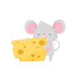 adorable mouse eating big piece of cheese rodent vector image