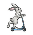 bunny riding on scooter color sketch vector image vector image