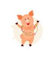 christmas pig vector image