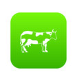 cow icon digital green vector image