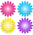 Four colorful flowers Pink blue yellow and purple vector image