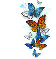 flying butterflies morpho and monarch vector image vector image