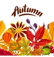 Seamless border with autumn leaves and plants vector image