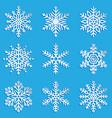 snowflakes set elegant snowflakes vector image vector image