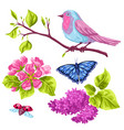 spring garden set of objects natural vector image