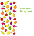 fruit banner or flyer template vector image