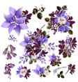 collection or set realistic field flowers vector image