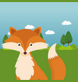 cute fox in the field landscape character vector image