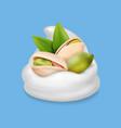 pistachio nuts in ice cream or yogurt realistic vector image vector image
