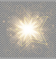the golden christmas star vector image vector image