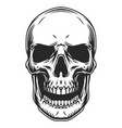 vintage monochrome human skull template vector image vector image
