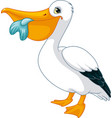 cartoon pelican vector image