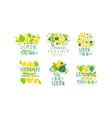 healthy lemonade logo templates original design vector image