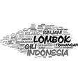 lombok word cloud concept vector image