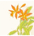 orange orchids vector image