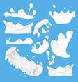set milk splashes drops and blots vector image