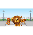 Wild animals in the road vector image vector image