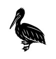 black pelican sign vector image vector image