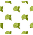 fresh green gooseberry with leaves pattern flat vector image vector image