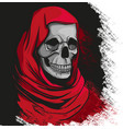 grim reaper in red robe portrait vector image vector image