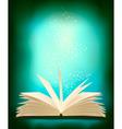 magic book vector image vector image
