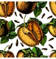 pattern of ripe persimmon vector image vector image